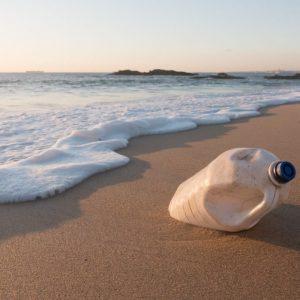 Quelles sont les causes de la pollutiondes océans?