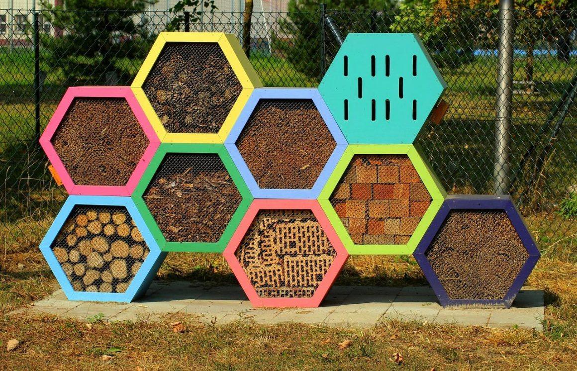 Hôtel à insectes : pourquoi a-t-il sa place dans le jardin ?