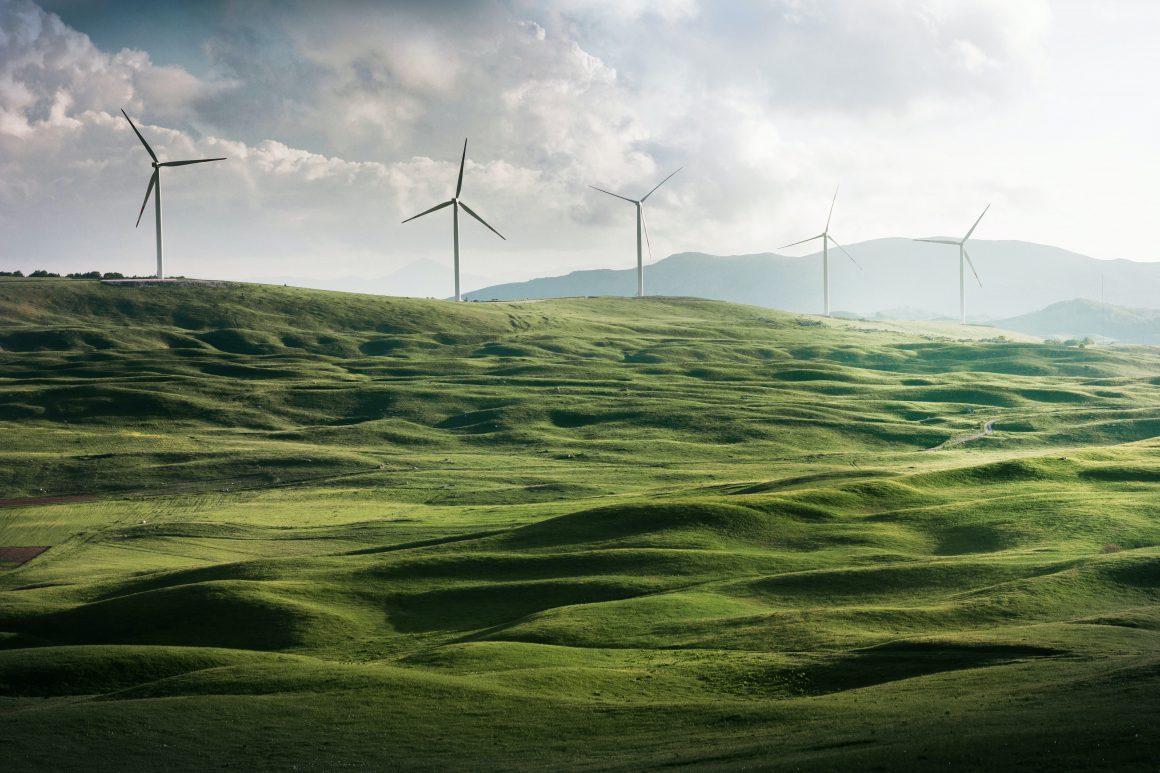 Énergies renouvelables : l'agriculture peut faire davantage