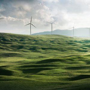 Les géants pétroliers peu à peu séduits par les énergies renouvelables