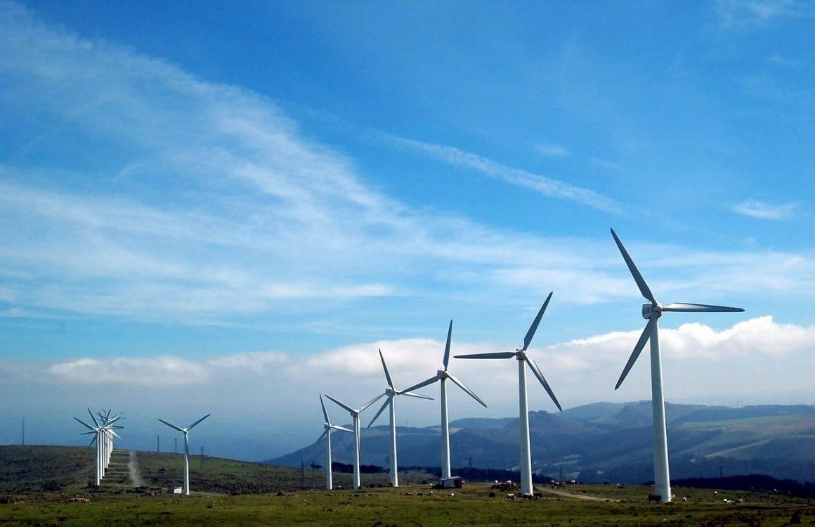 Éoliennes et biodiversité: un nouveau modèle calcule le bon compromis