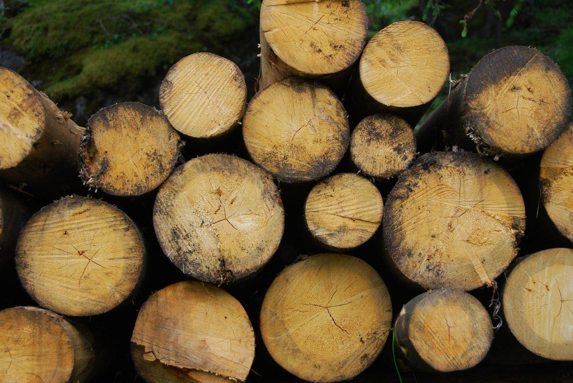 Optimiser la conversion d'énergie avec de la biomasse